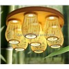 Creative garden lighting LED ceiling living room dining room wood 3130