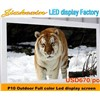 P10 Outdoor RGB P10 Full Color LED Display Module Waterproof Dip LED Screen Board