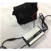 12.8V LiFePO4 battery 20-28AH (bag, charger, Torberry cable optional)