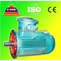 Explosion Proof Electrical Motor