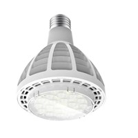 30w PAR30 led spotlight CREE XPE  E27 bulb led par light