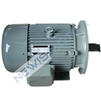 50KW DC motor for electric marine
