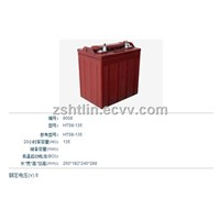 8V Golf cart battery,Club car battery
