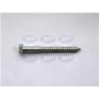 Hexagon Head Lag screw