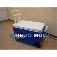 PE plastic cooler container blow mould