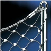 Selling High qualtiy stainless steel Wire Mesh Netting supplier