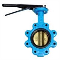 Split Stem Lug type Butterfly Valve