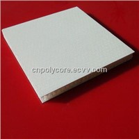 PP Honeycomb Sandwich Panel