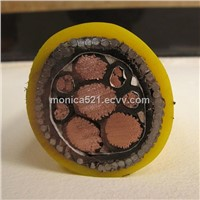 0.6/1KV XLPE Insulated SWA Armoured Marine Cable