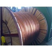 Stranded Copper Clad Steel Wires