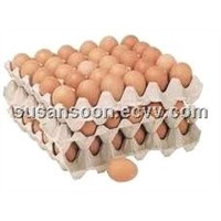 egg tray/egg box/paper pulp egg tray