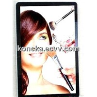 22 Inch Advertising Screen Display