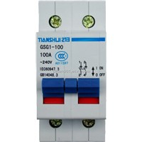 CAM ROTARY ROHS Tianshui 213 GSG1-100 series separated switch