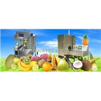 fruit processing machine