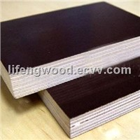 special size plywood and film faced plywood