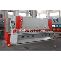 Hydraulic Automatic with Sheet Cutting Machine