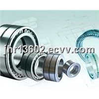 INA Cylindrical Roller Bearings (SL04 5004 PP)