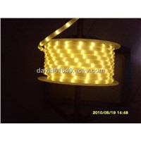 LED rope light/ ropelight