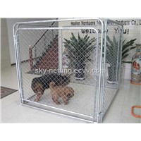 Animail Cage 200*50mm Mesh Size 4mm Diameter 1.8m Wide x 2m Higher Pre Galvanised Steel