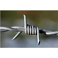 Hot-Dipped Galvanized Barbed Wire for Boundry