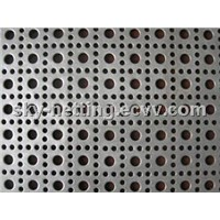 Perforated Metal/Perforated Sheet/Punching Hole Mesh