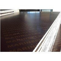 selling black and  brown  film  faced plywood