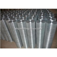 Hot Sale100mmx100mm 25x25mm Galvanzied PVC Coated Welded Wire Mesh-26 Years Factory