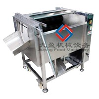 Fresh Ginger Washer&Peeler JYTP-80