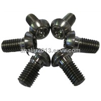 High-quality Pure Silver Nickel Screw