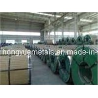 Hot Rolled Stainless Steel Coil (304)