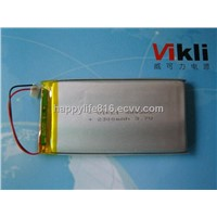 LifePo4 7570260-10AH storage battery