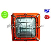 Mining flameproof LED roadway lamp