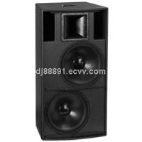 Professional Acoustic Audio Speaker