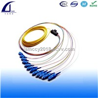 Ribbon Fiber Optic Patch Cord, Pigtail