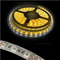 SMD 3528 SMD 5050 LED  Strip 12V DC