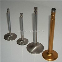 engine valves for BEDFORD