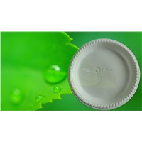 6' biofegradable disposable single use food tay