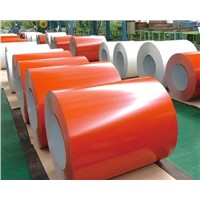 PPGI STEEL SHEET IN COIL