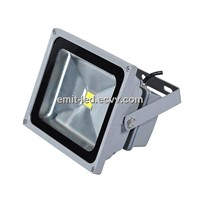 LED Flood Light 30w Bridgelux