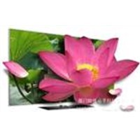 42-inch 1,080-pixel LED Advertising Player with LAN Port, Flash Drive and Aluminum Housing