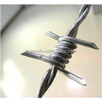 Double Strands Barbed Wire