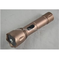 HD LED Flashlight Camera/Flashlight camera dvr with high light wholesale/Hunting camera