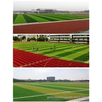 Synthetic Turf for Sports (LTUJDS503)