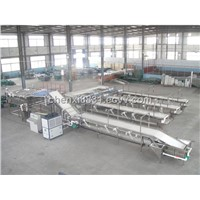 TK-G8500 HIGH SPEED CHERRY SIZE FRUIT GRADING PROCESSING LINE