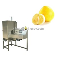 TK-PG500 AUTOMATIC GRAPEFRUIT PEELING MACHINE/STRIPPING MACHINE ON SALE