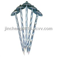 Umbrella Head Roofing Nails 25kg/Carton