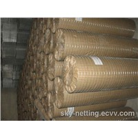 Hot Dipped Galvanzied Welded Wire Nettings Mesh Welded Pror to Galvanization