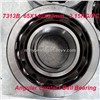 High Precision Angular Contact Ball Bearing 7313B