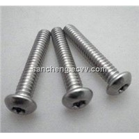 2012 Top Sale CNC SCREW