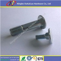 DIN 603 Truss Head Square Neck Galvanized Carriage Bolts